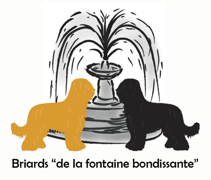 Briards – De la Fontaine Bondissante